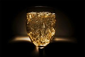 Apprentissage dégustation et découverte du Champagne