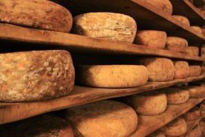 Découverte et dégustation des fromages de France - Evènementiel Lyon
