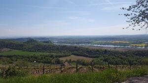 découverte du vignoble des côtes du Rhône en autocar ou en 2CV et dégustation dans les vignes