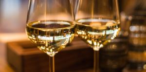 Dégustation de vin et initiation à l'oenologie