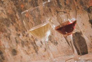 Dégustation de vin rouge et blanc