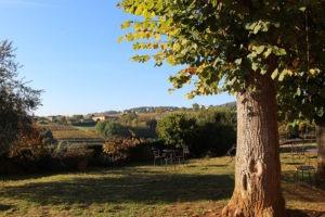 Séminaire au vert proche de Lyon, privatisation d'un domaine viticole