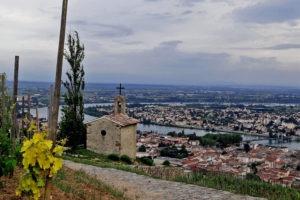 Sortie groupe visite vignobles Saint-Joseph, Condrieu et Hermitage