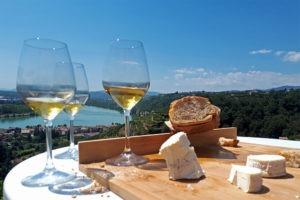 Sortie dans les vignobles pour vos journées team building ou entreprise à Lyon