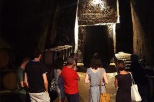 Visite de cave et dégustation de vin, accueil privilégié par un vigneron proche de Lyon