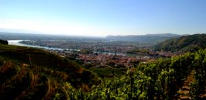 Visite de la Vallée du Rhône pour groupe par un guide-sommelier