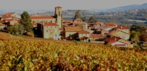 séminaire demi-journée découverte du beaujolais avec visite de cave, dégustation et activités œnologiques