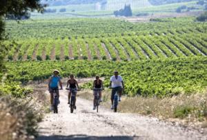 activité vélo groupe team building campagne lyonnaise