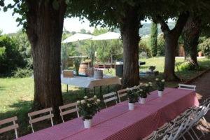 journée incentive au vert pour les entreprises dans domaine viticole