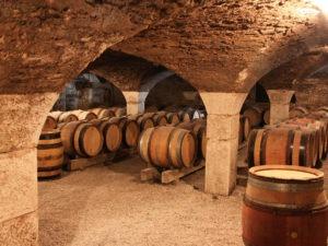 Visite de caves et domaine en Bourgogne