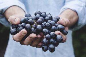 Séjour visite de domaines et dégustation de vin pour entreprise en val de loire