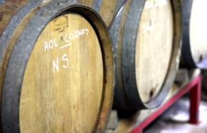 Visite et dégustation de cave chez des vignerons partenaires IDEGO
