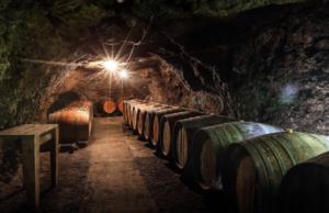 Visite de cave et dégustation de vin à Lyon