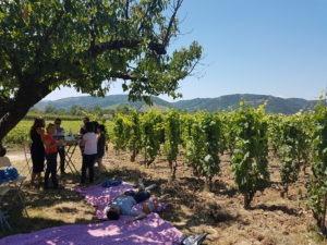 Barbecue estival dans vignobles proches de Lyon avec IDEGO