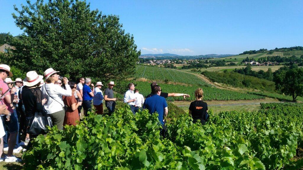 Apéritif dans les vignes avec IDEGO aux portes de Lyon