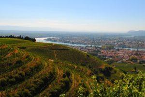 Découvrez les vignobles proche de Lyon avec IDEGO