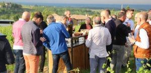 Les vignobles pour une journée de séminaire au vert proche de Lyon