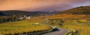 Visite des vignobles de la vallée du rhône