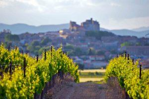 Organisation de séjour dans les vignobles par IDEGO