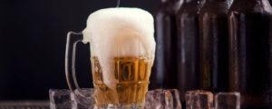dégustation biere commentée lyon originale