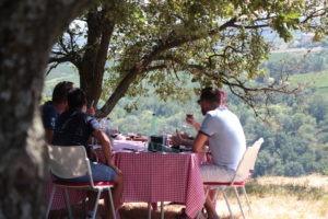 dejeuner dans un vignoble proche de lyon séminaire incentive